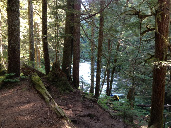 Denny Creek peaking through the trees, a perfect place to jump in, in the morning!