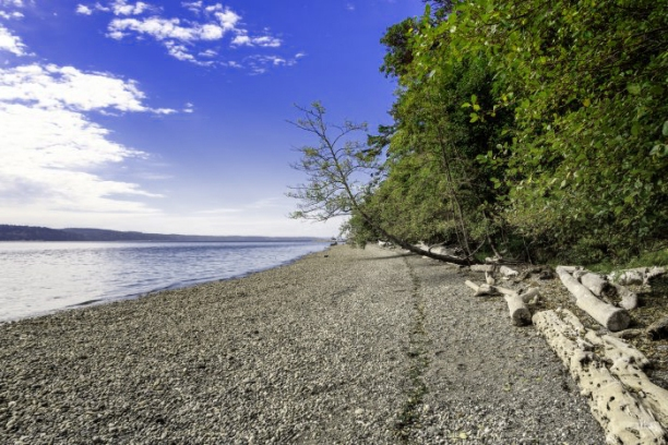 Camano_beach2